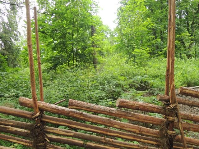 Talkoovoimin rakennetun riukuaidan takana olevaa laidunhakaa laidunnettiin lähes koko 1900-luvun ajan. Ensi vuodesta lähtien sen kunnossapidosta vastaavat taas lampaat.